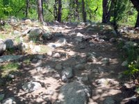 Rock Garden at Zook Loop and Blackmer Loop