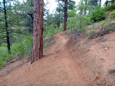 Zipline Trail Building, Bear Creek Canyon