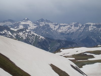 View from Engineer Pass