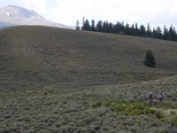 New Leadville 100 Singletrack