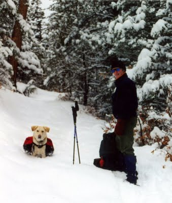 Dog Hiking in Snow with Packs
