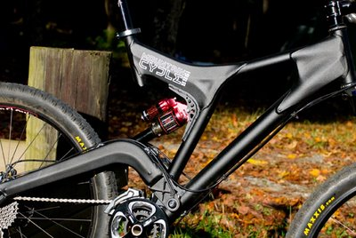 Mountain Cycle Fury Frame