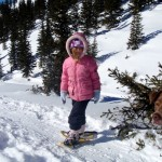 Snowshoeing on Wolf Creek Pass