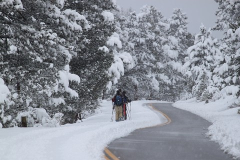 Visitors Enjoying Fresh-Snow in RMNP